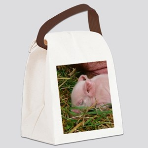 Sleeping Baby  Canvas Lunch Bag