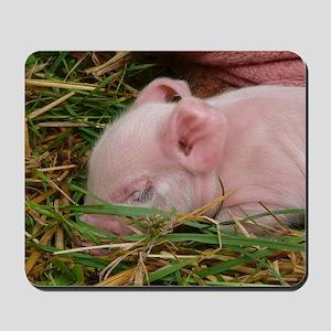 Sleeping Baby  Mousepad