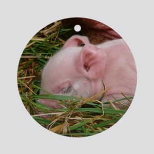 Sleeping Baby  Round Ornament