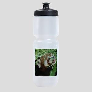 RedPanda20150812 Sports Bottle