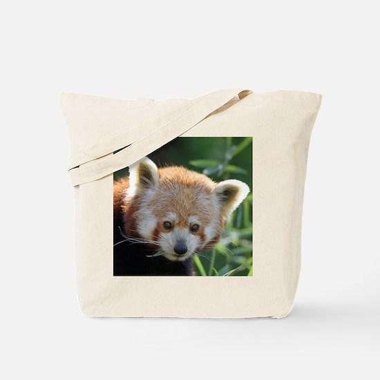 RedPanda20150816 Tote Bag