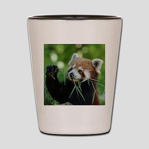 RedPanda20150818 Shot Glass