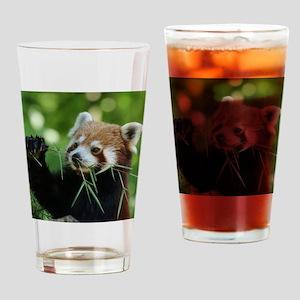 RedPanda20150818 Drinking Glass