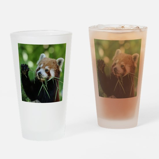 RedPanda20150818 Drinking Glass