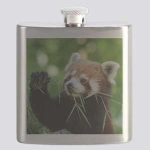 RedPanda20150818 Flask