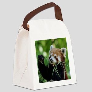 RedPanda20150818 Canvas Lunch Bag