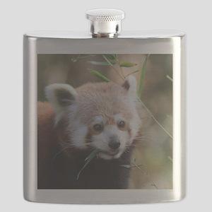 RedPanda20150802 Flask
