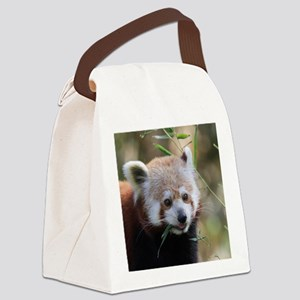 RedPanda20150802 Canvas Lunch Bag