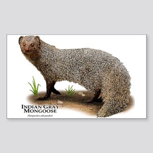 Indian Gray Mongoose Sticker (Rectangle)