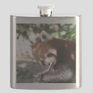RedPanda20150808 Flask