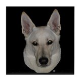 White german shepherd Coasters