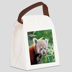 RedPanda20150805 Canvas Lunch Bag
