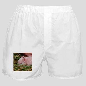 Sleeping Baby Boxer Shorts