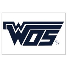 WOS-WOSAF3 Posters