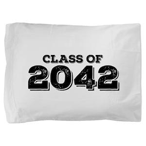 Class of 2042 Pillow Sham