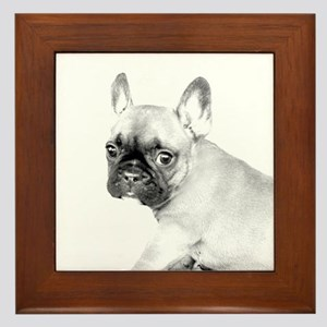 French Bulldog puppy Framed Tile
