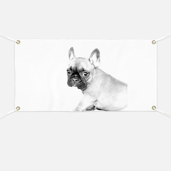 French Bulldog puppy Banner