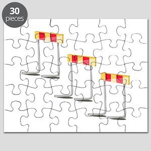 Race Hurdles Puzzle