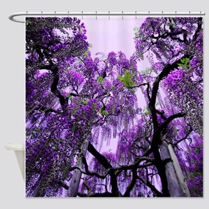 Purple Wisteria Shower Curtains