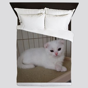 scottish fold white kitten Queen Duvet