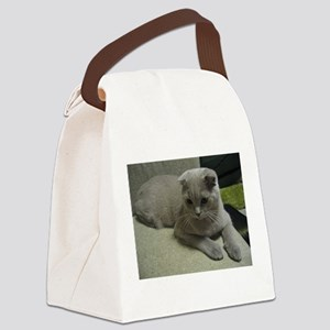 laying 2 scottish fold Canvas Lunch Bag