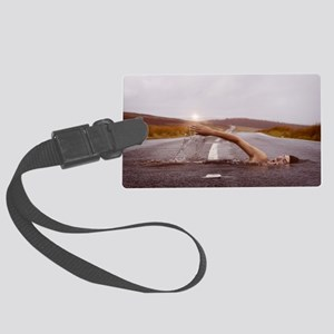 Swimming Down the Street Large Luggage Tag