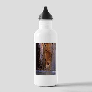 Zion Ntional Park Water Bottle