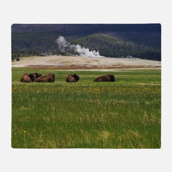 yellowstone national park Throw Blanket