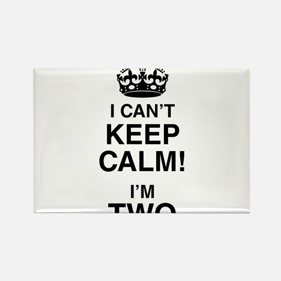 I Can't Keep Calm I'm Two Magnets