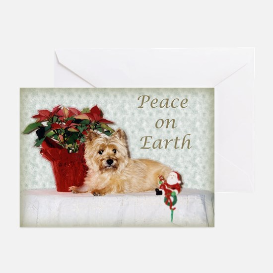 Peaceful Cairn Terrier Greeting Cards (Pk of 20)