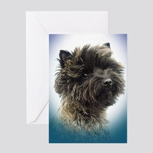 Top Winning Cairn Terrier Girl Greeting Card