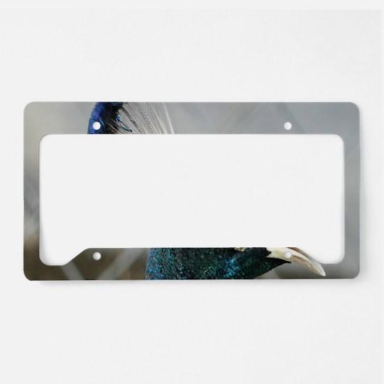 Peacock Head License Plate Holder