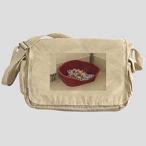 sphynx group Messenger Bag
