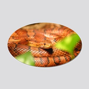 sunkissed corn snake Wall Decal