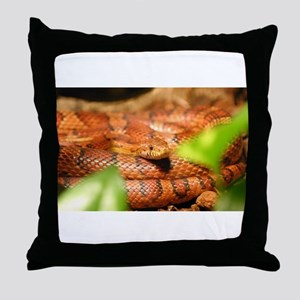 sunkissed corn snake Throw Pillow