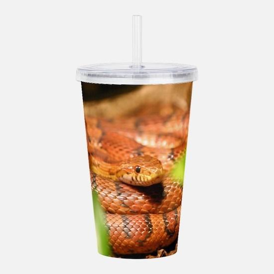sunkissed corn snake Acrylic Double-wall Tumbler