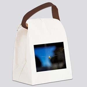 Itsy Spider II Canvas Lunch Bag