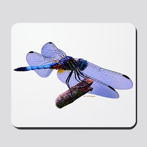 Blue Dasher Dragonfly Mousepad