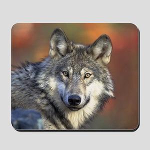 Wolf 022 Mousepad