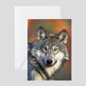 Wolf 022 Greeting Cards