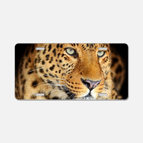 Leopard Portrait Aluminum License Plate
