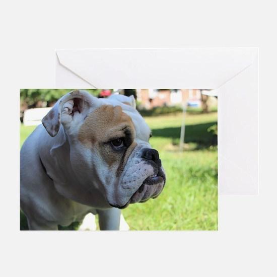 Cute Bulldog dog Greeting Card