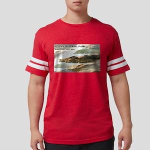 Acadia National Park Coastline T-Shirt