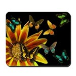 Sunflower Butterflies Mousepad