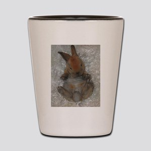 Mini Rex Baby Shot Glass