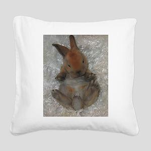 Mini Rex Baby Square Canvas Pillow