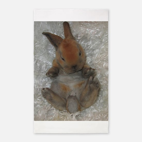 Mini Rex Baby Area Rug