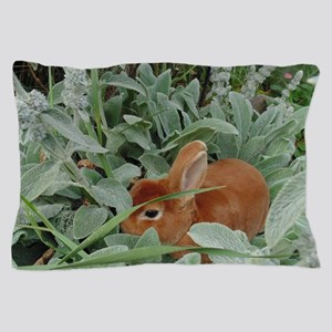 Red Mini Rex Pillow Case
