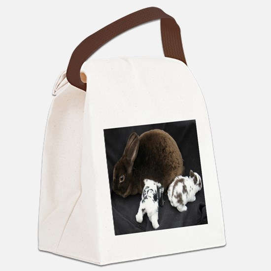 Mama MR & Babies Canvas Lunch Bag