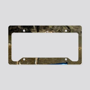 kayaking Puppy   License Plate Holder